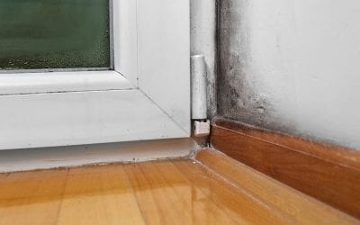 6 Ways to Prevent Mold Growth in Your Home
