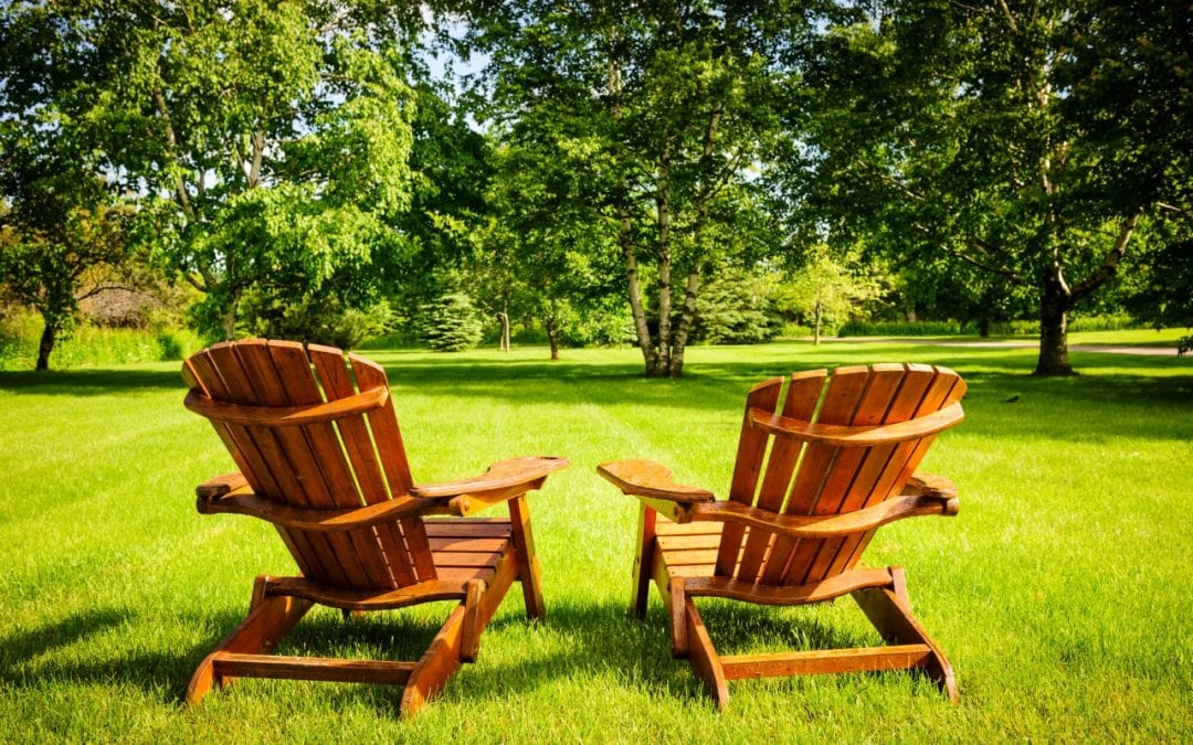 5 Summertime Lawn Care Tips for a Healthy Yard