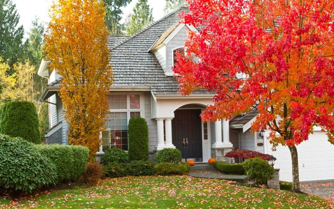 5 Ways to Improve Curb Appeal this Fall
